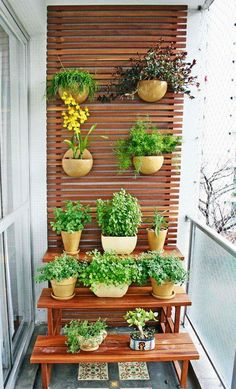 Generally, a balcony only has a table with chairs or even left to be empty. If you are having that kind of balcony, you should start to manage creating a small garden on your balcony because it will give a clement impression into your balcony. Narrow Balcony, Small Balcony Garden, Terrace Garden, Indoor Garden, Balcony Gardening, Balcony Ideas, Small Garden Containers, Container Gardening, Apartment Balcony Garden