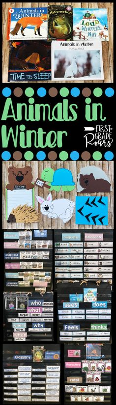 What do animals do in winter? This unit will help your students understand hibernation, adaptations, migrations, and torpor. There are 5 anchor text both fiction and nonfiction. Animals in winter digital book with paper pencil copies for your students too. Work on checking for understanding, writing, word, work, and crafts too. Loads of fun for kindergarten, first grade and second grade.