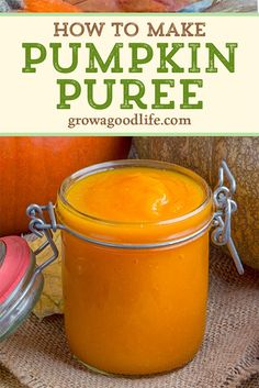 Learn how to make pumpkin puree from a whole pumpkin you grew or picked up from a local farm stand. You can use this homemade pumpkin puree in any recipe that calls for canned pumpkin! Homemade Pumpkin Puree, Canned Pumpkin, Pumpkin Recipes, Fall Recipes, Homemade Salsa, Homemade Food, Food Shelf Life, Real Food Recipes, Cooking Recipes