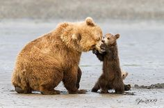 Playing With Mom by Judylynn Malloch on 500px
