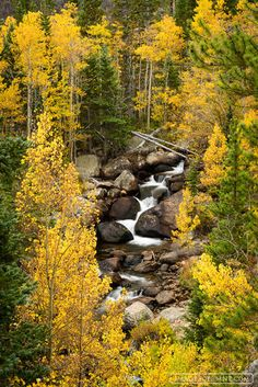 2015,<5. LANDSCAPE,<glacier gorge area,america,aspen,autumn,cascade,colorado,glacier creek,glacier gorge,nature,rmnp,rocky,rocky mountain national park,september,stream,tree,united states of america,u