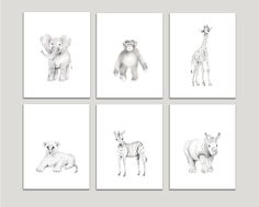 Safari Nursery Art, Set of 6 Prints, Pencil Drawing Prints, Elephant, Giraffe, Monkey, Lion, Zebra, Rhino, Various Sizes Available, Unframed Prints. This is set of (6) art prints from my original pencil drawings - the set includes a baby elephant, giraffe, monkey, lion, zebra and rhino. The images will be printed on beautiful, high quality, archival fine art paper that is both acid and lignin free and the prints will be signed and dated on the back by me. They are shown here on off-white...