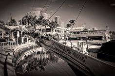 http://fineartamerica.com/featured/reflections-in-black-david-bell.html