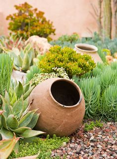 in the landscape w pots