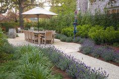 lavender garden borders - Google Search