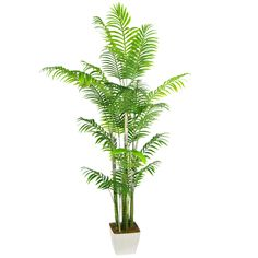 Artificial Areca Palm Trees With 25 Leaves Small Palm Trees, Small Palms, Leaves, Plants, Plant, Planets