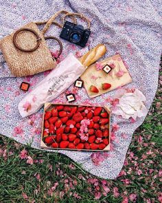 "like-fairy-tales: ""By: Victoria Chmel Picnic Date, Summer Picnic, Carne Asada, Taco Beach, Picnic Images, Picnic Decorations, Garden Picnic, Wicker Picnic Basket, Apple Tea"