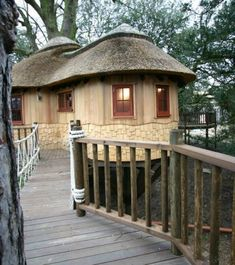 This awesome arboreal dwelling is the Living the High Life Tree House created by Blue Forest, a British tree house design and construction firm. It's a luxury family-sized complex featuring two. Luxury Tree Houses, Cool Tree Houses, Cabana, Tree House Designs, Forest Design, Blue Forest, Unique Trees, Thatched Roof, Diy Holz