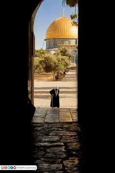 Dome of the Rock Jerusalem,Palestine Beautiful Mosques, Beautiful Places, Palestine Art, Dome Of The Rock, Religion, Islamic Girl, Mekkah, Amazing Buildings, Islamic Architecture