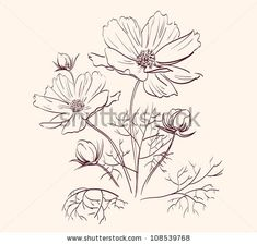 Image from http://floweryweb.com/wp-content/uploads/2015/02/beautiful-flowers-drawing-hr5fho25.jpg.