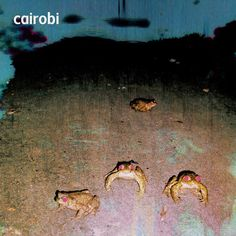 "Rock Paradiso: Cairobi - ""Saint"", ""Zoraide"" (From the Album, ""Cai..."