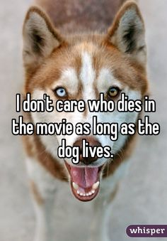 I seriously absolutely feel this way. I'm way more upset when a dog dies in a movie than a human!