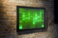 - What would make better art than your own DNA? That's the theory behind Generate's DNA Gloframe, which lets you permanently display a strand of you. Dna Art, Cool Things To Make, Cool Art, Artist, Lab, House, Home, Haus, Houses