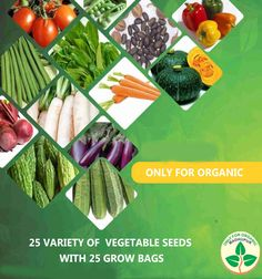 Ofo Only For Organic 25 variety of vegetable seeds with 25 grow bags Organic Vegetable Seeds, Organic Seeds, Organic Vegetables, Seeds Online, Grow Bags, Free Shipping