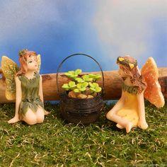 Mini fairies picking shamrocks in the fairy garden.