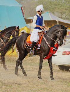 Ali Hajveri Tent Pegging Club: Rider:Shahid Irfan MalwanaHorse:InklaabEvent:Kuley...