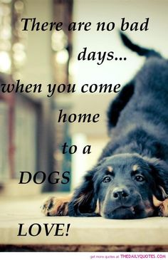 Quotes And Sayings About Dogs | motivational love life quotes sayings poems poetry pic picture photo ... #dogsayings