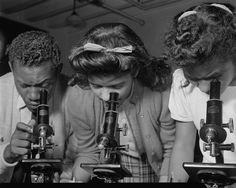 Students use microscopes at Bethune-Cookman College, Daytona Beach, Fla., February 1943  Photo by Gordon Parks/Library of Congress