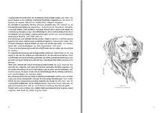 "Bwana, the Rhodesian ridgeback, one of the illustrations in ""Schetsboek"""