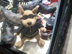 Peluchess. Cool Kangaroo