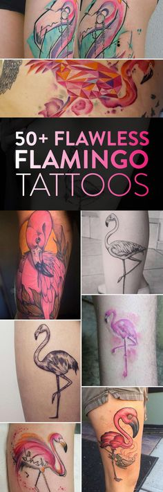 50 Flawless Flamingo Tattoos | TattooBlend
