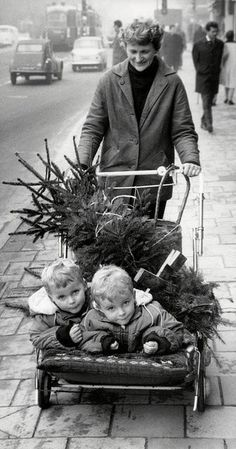 Taking Home the Christmas Tree, 1950's. Love it !