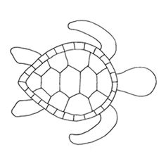 Turtle template, a Image by 61352151511 - ROBLOX (updated 7/25/2011 10:48:06 AM)
