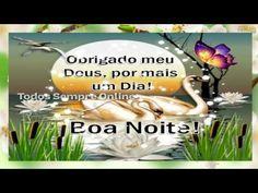 FALANDO DE VIDA!!: Boa noite para você e toda a sua família - video d...