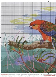"Photo from album ""попугаи"" on Yandex. Cross Stitch Bird, Cross Stitch Animals, Counted Cross Stitch Patterns, Cross Stitch Charts, Cross Stitch Landscape, Bird Embroidery, Tropical Birds, Bird Patterns, Pet Birds"