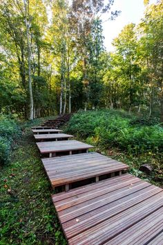 ww1-landscape-memorial-forest-path-Ypres-Belgium-omgeving-landscape-architecture-12 « Landscape Architecture Works | Landezine