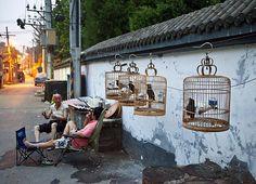 Beijing hutong life