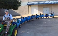 Uplifting Dog Train - Made by cutting holes into plastic barrels, adding wheels and tying them together. #rescuedogs