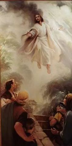 Images Du Christ, Images Bible, Pictures Of Jesus Christ, Religious Pictures, Bible Pictures, Religious Art, Lds Art, Bible Art, Christian Pictures