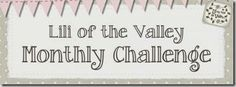 Challenge Ideas …