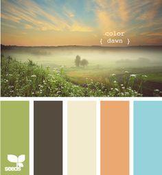 color dawn