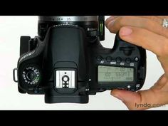Canon 60D tutorial: Using the exposure compensation | lynda.com
