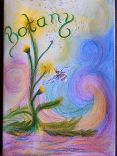 Grade 5 botany main lesson cover