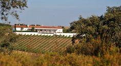 Os melhores hotéis vínicos de Portugal