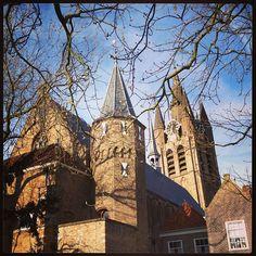 Delft Prinsenhof Lente 2013  Foto: Suzanna Ruis