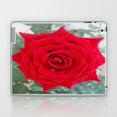 ONE & ONLY YOU Laptop & iPad Skin by Annie Koh - $25.00