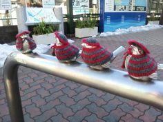 江ノ電の江ノ島駅なう。あまりの寒さに柵にとまったスズメも防寒着を着込んでいます。