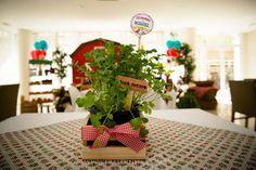 Festa fazendinha | Macetes de Mãe Farm Birthday, Happy Birthday, Birthday Parties, Tema Cowboy, Farm Party, Baby Shower, Table Decorations, Holiday Decor, Home Decor