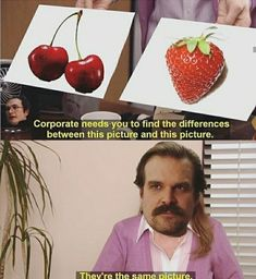 Corporate nee 5 yºu to find thé differences between this picture and this picture. Watch Stranger Things, Stranger Things Have Happened, Stranger Things Season, Stranger Things Netflix, Stupid Memes, Stupid Funny, Saints Memes, Stranger Danger, Funny Relatable Memes