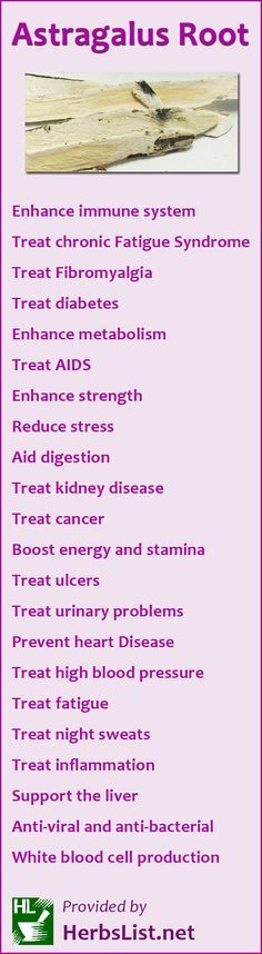 Astragalus Root Benefits
