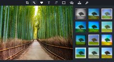 PiZAP - online photo editor and collage maker - easy to use, no need to download