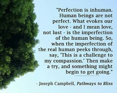 Joseph Campbell quote on perfectionism Joseph Campbell Zitate, Joseph Campbell Quotes, Insight Out, Learning For Life, Hero's Journey, Spiritual Teachers, Word Of Advice, Mind Body Soul, Close To My Heart