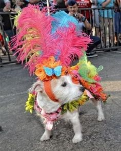 Fiesta San Antonio Commission - by rosiete