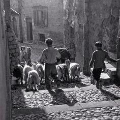 Sicily, strolling down town #lovesicily #sicilyvintage #wildsicily