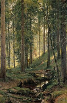 rompedas: FOREST LANDSCAPES on dirait un petit coin le long de la moder en alsace,ou gamine je faisait un barrage en cailloux pour se baigner.