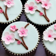 Cherry blossom cupcakes by RuthBlack. Cupcakes decorated with cherry blossom flo. - Cherry blossom cupcakes by RuthBlack. Cupcakes decorated with cherry blossom flowers - Cupcake Fondant, Fondant Toppers, Cupcake Cookies, Fondant Cake Tutorial, Fondant Bow, Cherry Blossom Party, Cherry Blossoms, Decoration Patisserie, Fondant Flowers